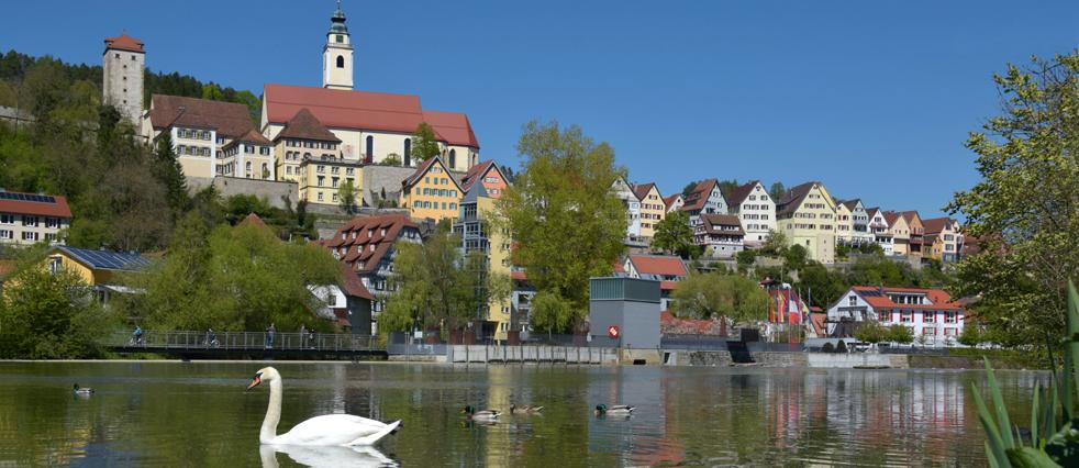 Horber Stadtsilhouette vom Neckar